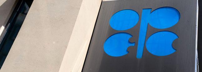 OPEC+ to Balance Market Share Gains