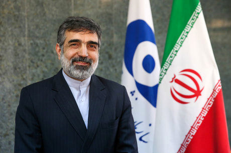 Iran, Russia officials meet on nuclear cooperation