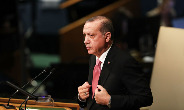 Erdogan Says Turkey Will Set Up 'Security Zone' in N. Syria