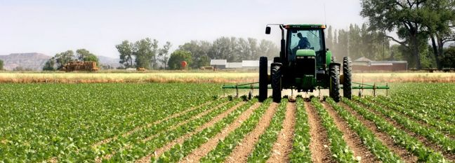 Iran Agro Output Expected to Hit 128m Tons by March 2021