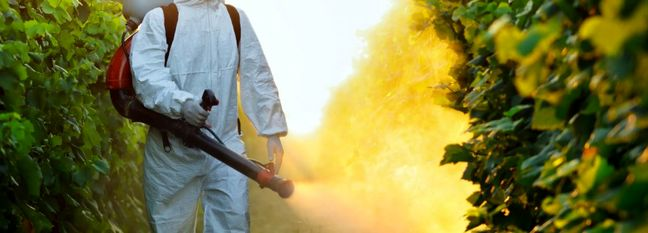 Pesticide Production Up 31% in Eight Months