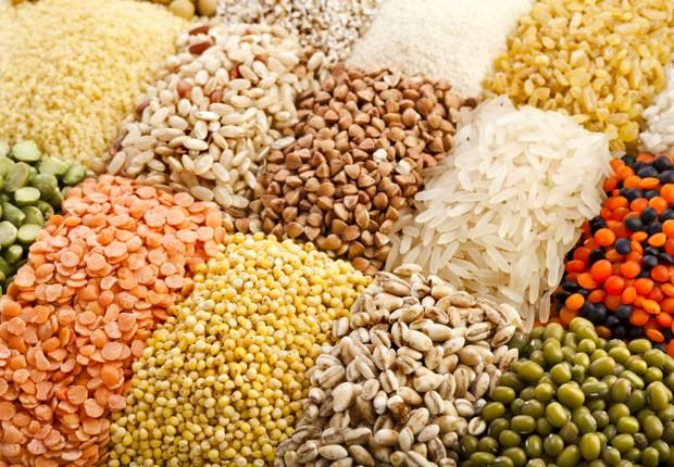 FAO Forecasts Iran's Cereal Output to Rise 12% in 2018