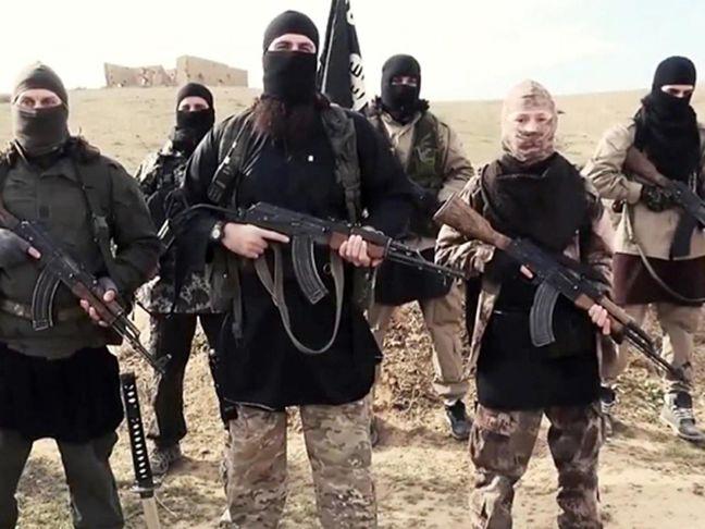 U.S. estimates 50,000 Islamic State fighters killed so far: U.S. official
