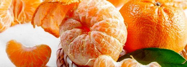 Miandoroud Tangerine Exports Surpass 2.5K Tons