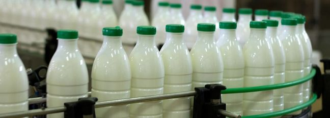 Milk Production at 11m Tons Last Year