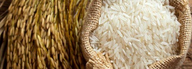 Seasonal Rice Import Ban Postponed to September 21