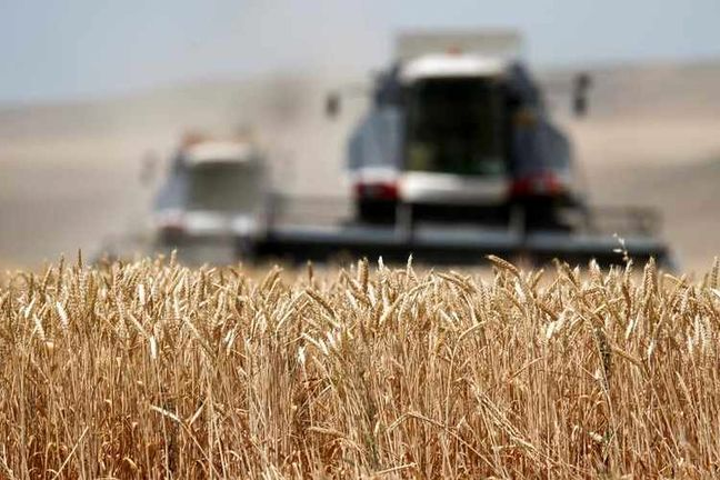 Progress in Financing Wheat Deal With Russia, Kazakhstan
