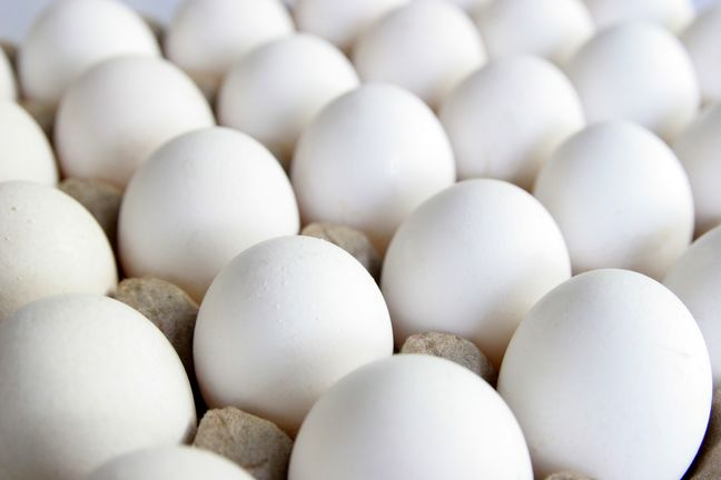 Iran's Egg Exports Hit Rough Patch