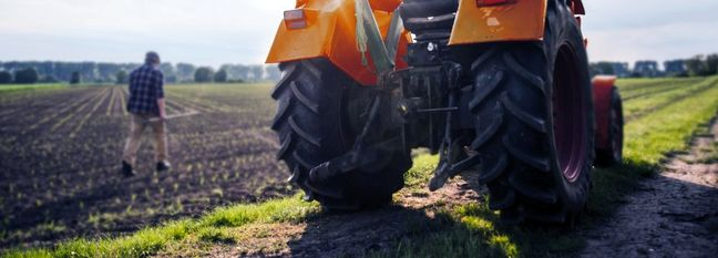 Q1 Agrifood Exports Reach 2m Tons Worth $1.2 Billion