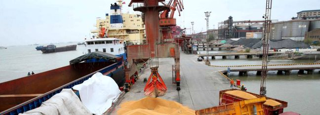1.8m Tons of Animal Feed Raw Materials Imported in 2 Months