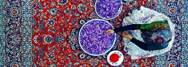 Iran Saffron Exports Reach $86 Million in 8 Months