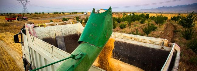 Iran's Q1 Growth Driven by Agro Sector