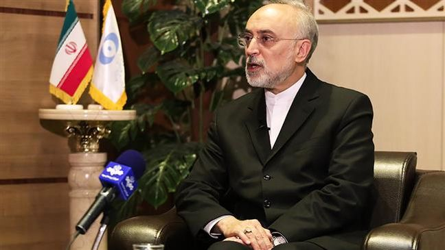Iran to resume 20-percent enrichment in 5 days if necessary: Nuclear chief