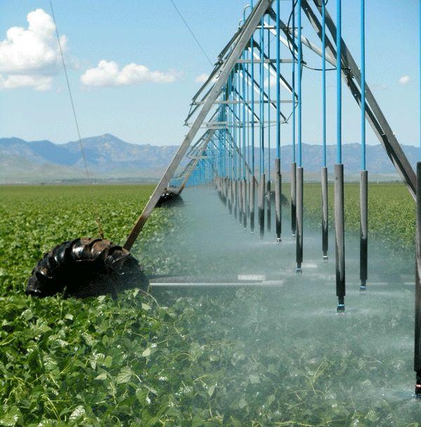 Iran Irrigation Efficiency at 45%